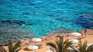 The Tourist Office of the Egyptian Tourism Promotion Board in Hurghada received, on Sunday, the first tourist group from the German capital, Berlin, since the resumption of travel in early July.