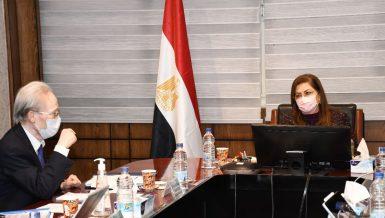 Egypt, Japan discuss increasing bilateral cooperation