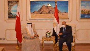 Egypt's Minister of Foreign Affairs Sameh Shoukry during a meeting with his Bahraini counterpart Abdul Latif Al-Zayani in Cairo. Daily News Egypt