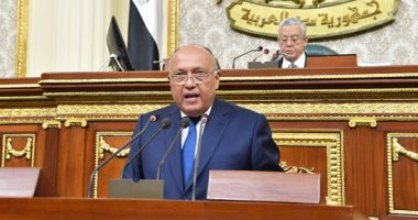 Egypt will not compromise on its water rights: Foreign Minister