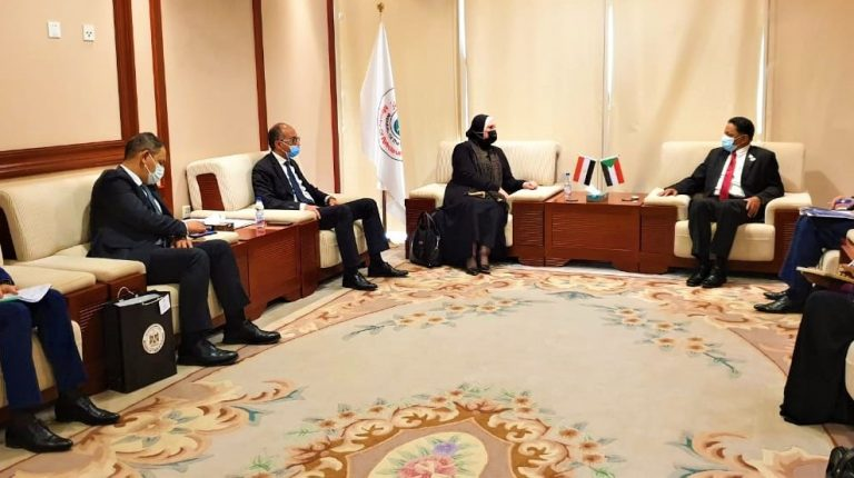 Egypt, Sudan agree to utilise mineral resources for industrial purposes