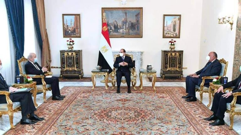 Egypt's President Abdel Fattah Al-Sisi expressed, on Monday, Egypt's aspiration to benefit from French expertise in achieving its development plans.