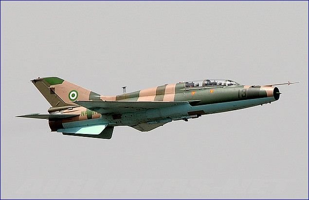 Scores of Boko Haram militants were killed in a series of airstrikes by the Nigerian military in the country's restive northeastern state of Borno, an official said on Friday.