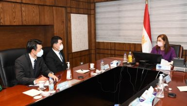 Egypt, South Korea discuss bilateral cooperation, COVID-19 response