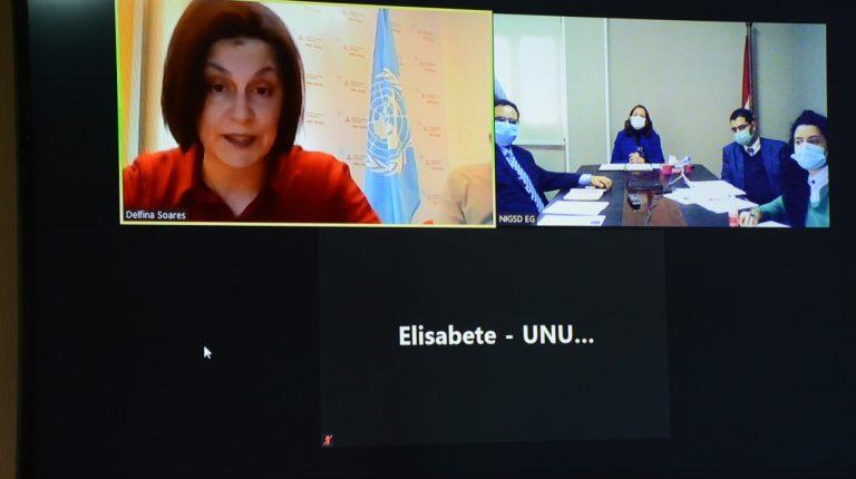 Egypt's NIGSD, United Nations University sign MoU in training, advisory fields