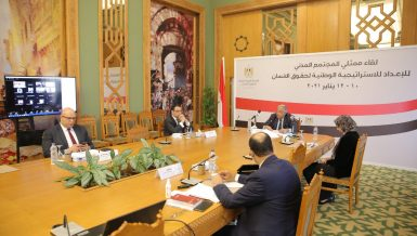 Egypt holds 3-day hearings in preparation for National Human Rights Strategy