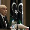 Speaker of Libya's House of Representative, Aguila Saleh