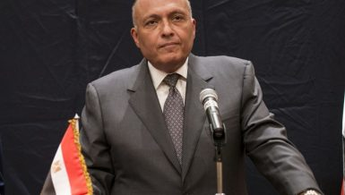 Shoukry, UN Middle East Envoy discuss support for Palestinian cause