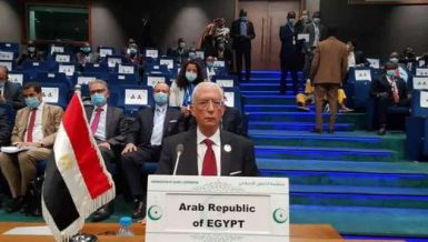 Ambassador Hamdi Sanad Loza, Egypt's Deputy Minister of Foreign Affairs for African Affairs, is attending the two-day seventh regular session of Heads of State of the G5 Sahel summit in the Chadian capital N'Djamena