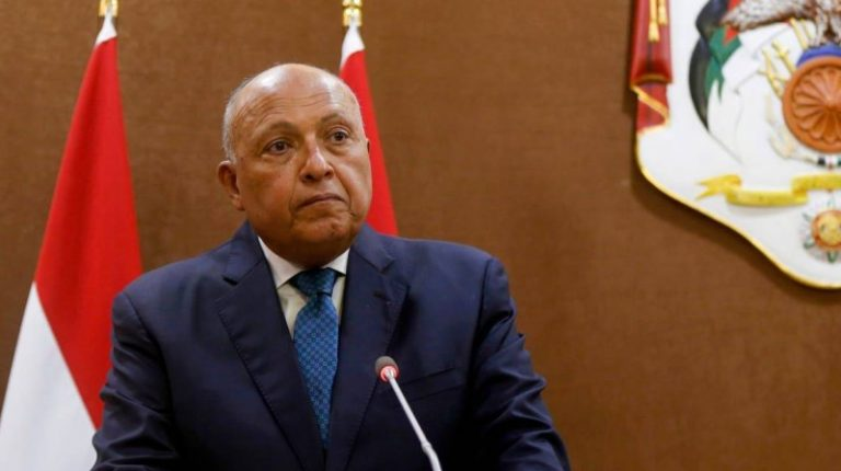 Egypt has no ambitions in Libya, only seeks Libyan stability, says Egyptian Minister of Foreign Affairs Sameh Shoukry. Daily News Egypt