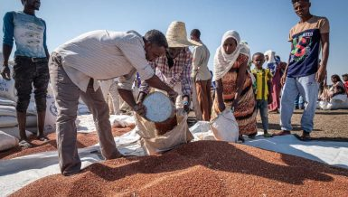World Food Programme (WFP) aid workers and volunteers distribute lentils to refugee families in Village 8 refugee settlement, Sudan, November 2020. The UN Refugee Agency says that about 43,000 people have fled Ethiopia's embattled Tigray region into neighbouring Sudan. © WFP/Arete/Joost Bastmeijer