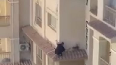 Madinaty firefighters rescue cat that fell from balcony