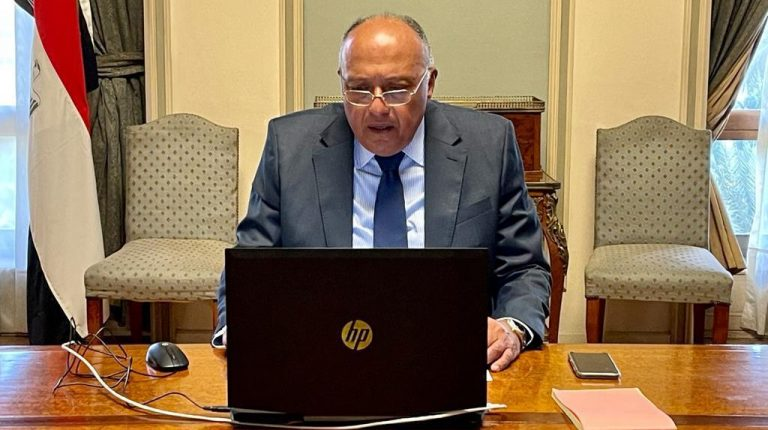 Shoukry congratulates new Sudanese Foreign Minister on appointment