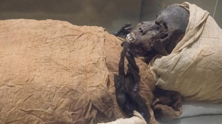 CT scan on Pharaoh Seqenenre-Taa II mummy reveals cause of death - Daily News Egypt