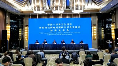 Chinese and WHO experts have completed their work in Wuhan as part of the global scientific research on the origin of the novel coronavirus, a National Health Commission official said at a press conference in Wuhan on Tuesday.