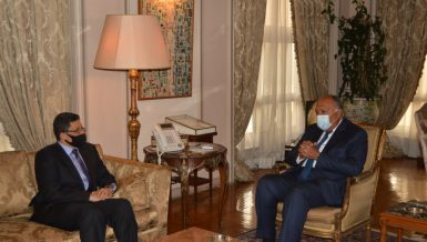 Shoukry affirms Egypt's support for Yemen achieving stability, development