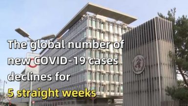Global new COVID-19 cases have been declining for 5 straight weeks. Weekly new cases of COVID-19 have fallen by almost half.