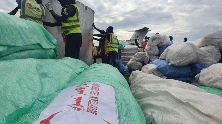 Egypt sends humanitarian aid to displaced people in South Sudan
