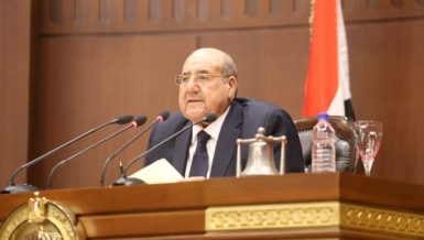 Egypt's Senate elects heads, members of special committees