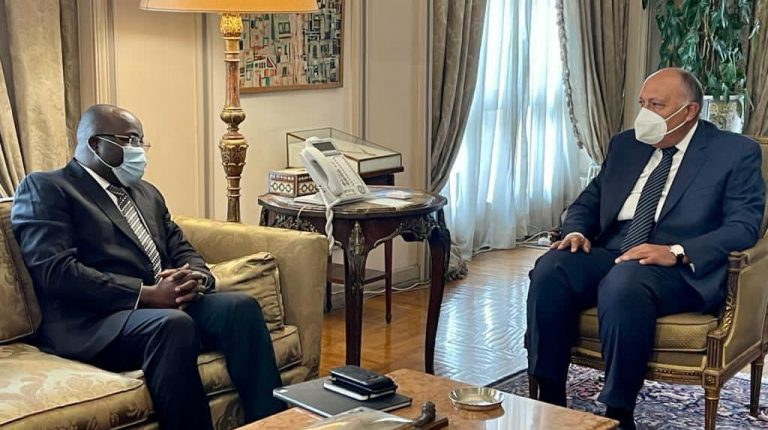 Egypt, Guinea discuss African issues of common interest