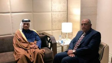 Shoukry meets Qatar's Al Thani for 1st time since 2017 boycott