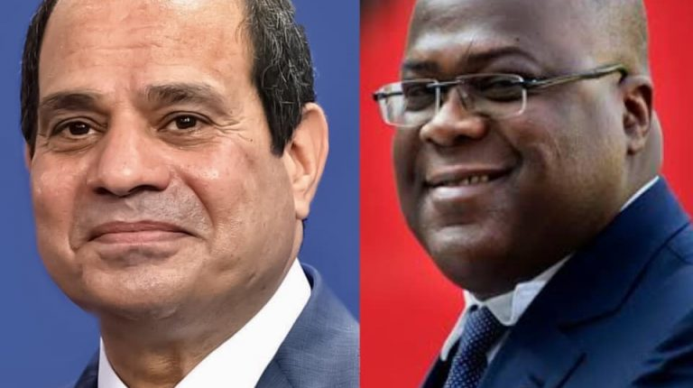 Egyptian President Abdel-Fattah al-Sisi and his counterpart of the Democratic Republic of Congo (DRC) Felix Tshisekedi Nile dam dispute