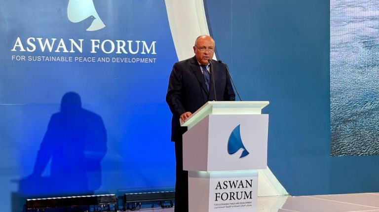 Aswan Forum II: Egypt FM asserts importance of joint African action in achieving peace, development