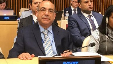 Mohamed Idris, Egypt's permanent representative to the UN in New York
