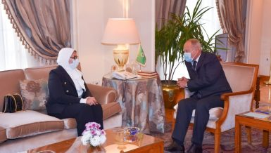 Egypt's Health Minister, Aboul Gheit discuss support for Arab countries amid COVID-19