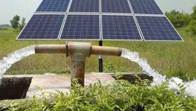 IFC, Alexbank partner to promote Egypt agriculture switch to solar irrigation