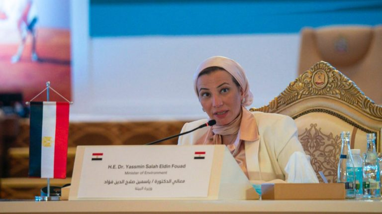 Environment Minister highlights Egypt's climate efforts at regional meeting