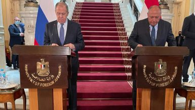 Egypt, Russia discuss cooperation projects, regional issues