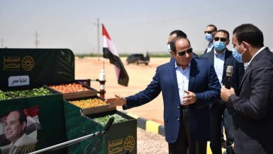 Egypt's Al-Sisi inspects harvest season of mega agricultural project in Western Desert