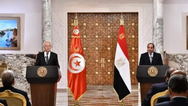 Egypt, Tunisia agree on Libya support, cooperation on African topics