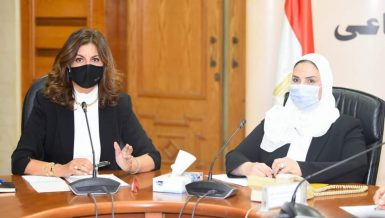 Egypt forms technical committee to train expatriate returnees