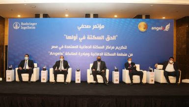8 Egyptian stroke centres win international WSO Angels Awards