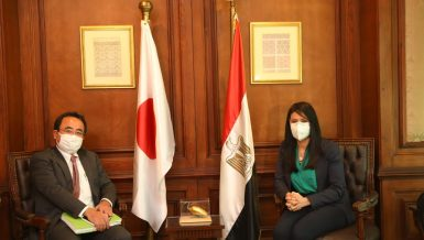 Egypt, Japan discuss enhancing bilateral cross-sector cooperation