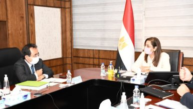 Egypt, Japan discuss future cooperation aspects