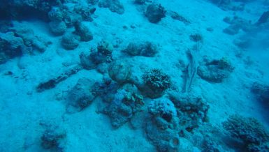Egypt discovers mid-18th Century shipwreck by Saadana Island in Red Sea