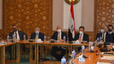 Egyptian-African Relations Committee discusses strengthening Egypt's stance in Africa