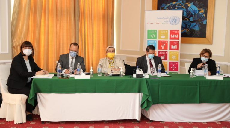 Environment Minister highlights Egypt's efforts in UN climate dialogue