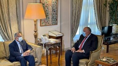 Egypt's Shoukry calls for prioritising political solution to Yemen crisis