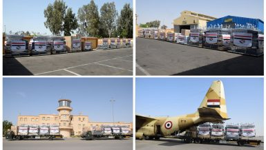 Egypt's medical supplies shipments dispatched to India