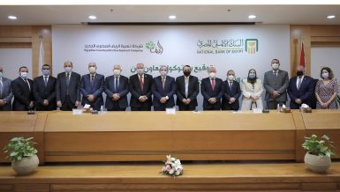 National Bank of Egypt to finance 1.5-million-feddan reclamation project beneficiaries