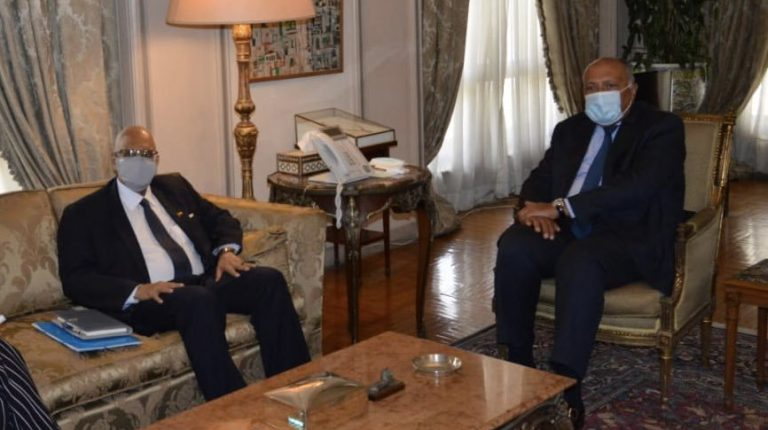 Egypt, Mali discuss strengthening bilateral relations in various fields