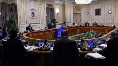 Egypt's political leadership working to halt Palestine-Israel escalation: Prime Minister