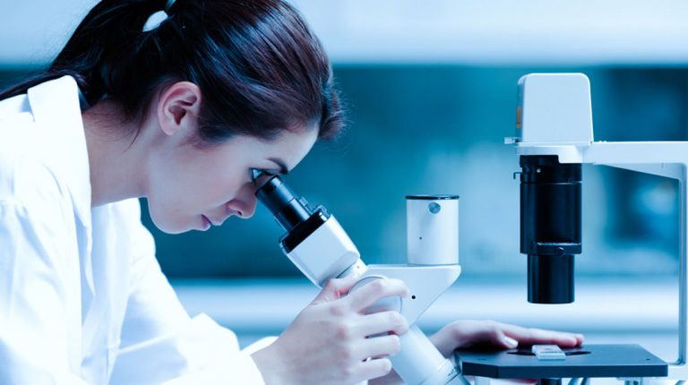 Egypt relatively close to achieving gender equality in science: UNESCO
