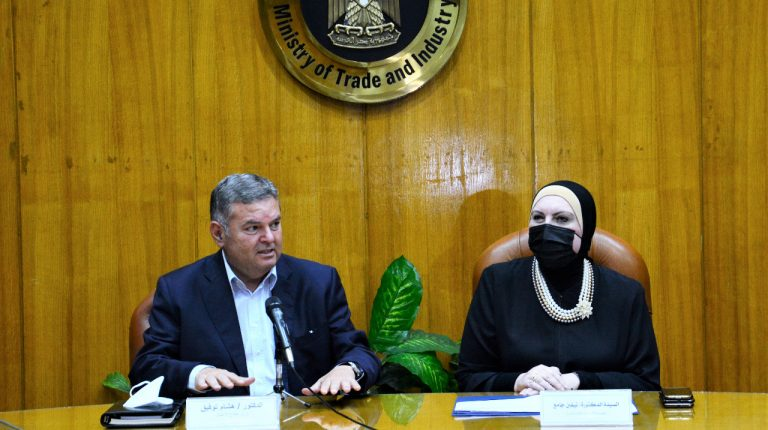 Egypt's Trade, Public Enterprise Ministers discuss providing textile factories with raw materials