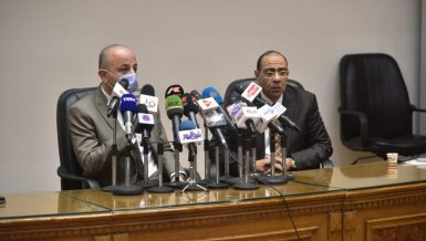 Egypt's COVID-19 treatment protocol has been updated: Health official