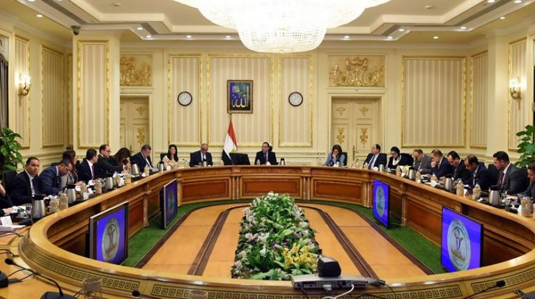 Egypt's Cabinet denies using internationally banned antibiotics in poultry farms